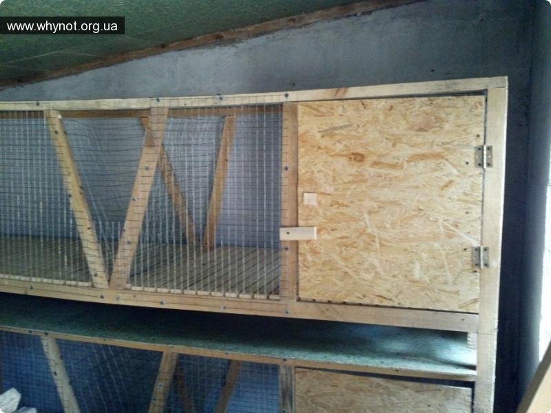 Как сделать дверцу в клетке для кроликов - Ремонт СПБ